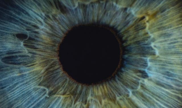 Schon gewusst? So entsteht unsere Augenfarbe
